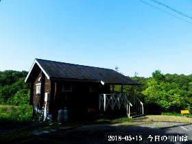 2018-05・15 今日の里山は・・・ (2).JPG