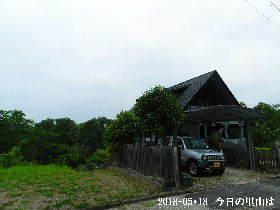 2018-05・18 今日の里山は・・・ (1).JPG