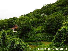 2018-06・12 今日の里山は・・・ (4).JPG