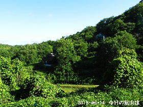 2018-06・14 今日の里山は・・・ (4).JPG