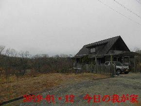 019-01・12 今日の里山は・・・ (1).JPG