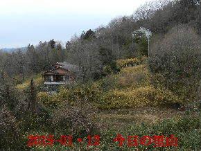 019-01・12 今日の里山は・・・ (4).JPG