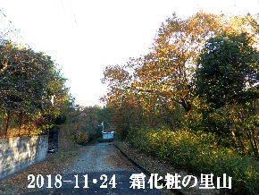 20018-11・24 今日の里山は・・・ (4).JPG