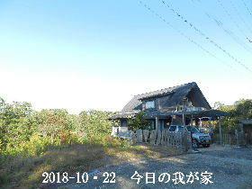 2018--10・22 今日の里山は・・・ (1).JPG