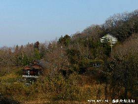 2018-02・26 今日の里山は・・・ (4).JPG
