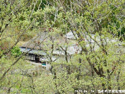 2018-04・14 今日の古民家模様.JPG