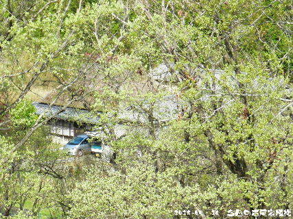 2018-04・16 今日の古民家模様.JPG