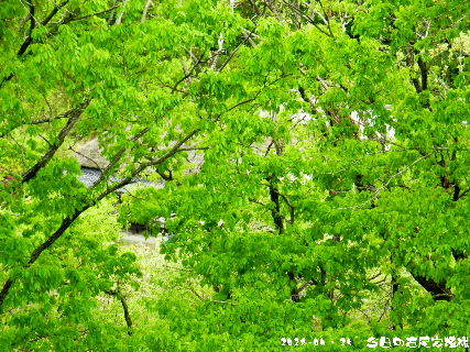 2018-04・24 今日の古民家模様.JPG