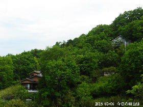 2018-05・06 今日の里山は・・・ (4).JPG