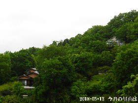 2018-05・13 今日の里山は・・・ (4).JPG