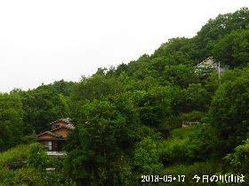 2018-05・17 今日の里山は・・・ (4).JPG