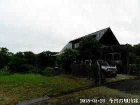 2018-05・23 今日の里山は・・・ (1).JPG
