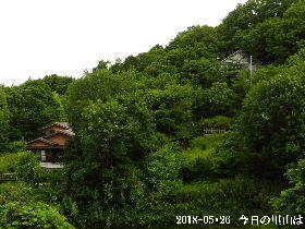 2018-05・26 今日の里山は・・・ (4).JPG