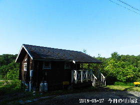 2018-05・27 今日の里山は (2).JPG