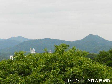 2018-05・29 今日の我が町.JPG