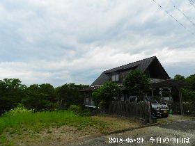 2018-05・29 今日の里山は・・・ (1).JPG