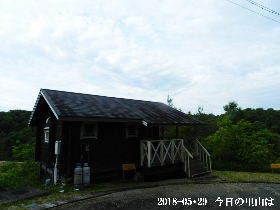 2018-05・29 今日の里山は・・・ (2).JPG