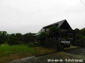 2018-05・30 今日の里山は・・・ (1).JPG