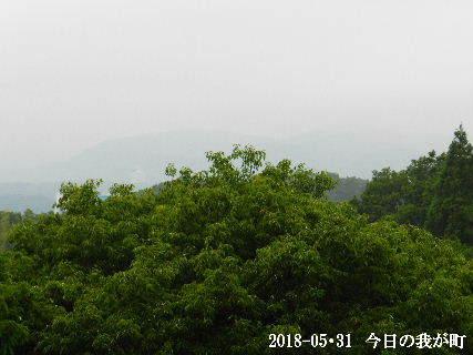 2018-05・31 今日の我が町.JPG