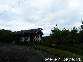 2018-06・11 今日の里山は・・・ (2).JPG