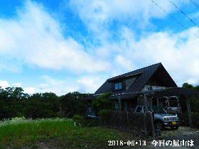 2018-06・13 今日の里山は・・・ (1).JPG