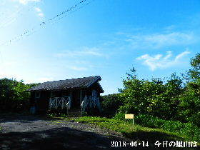 2018-06・14 今日の里山は・・・ (2).JPG