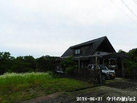 2018-06・21 今日の里山は・・・ (1).JPG