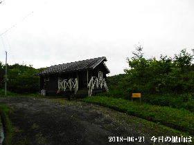 2018-06・21 今日の里山は・・・ (2).JPG