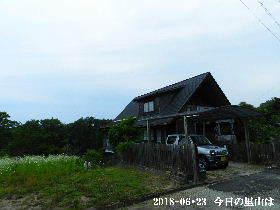 2018-06・23 今日の里山は・・・ (1).JPG