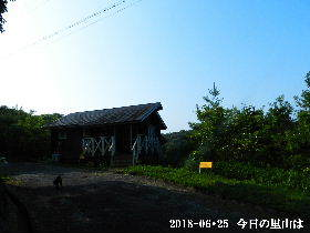 2018-06・25 今日の里山は・・・ (2).JPG