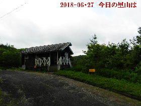 2018-06・27 今日の里山は・・・ (2).JPG