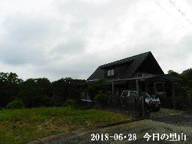 2018-06・28 今日の里山は・・・ (1).JPG