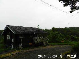 2018-06・28 今日の里山は・・・ (2).JPG