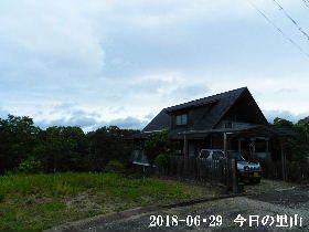 2018-06・29 今日の里山は・・・ (1).JPG