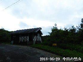 2018-06・29 今日の里山は・・・ (2).JPG