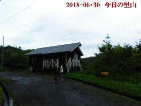2018-06・30 今日の里山は・・・ (2).JPG