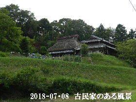 2018-07・08 今日の出遭い・・・ (6).JPG