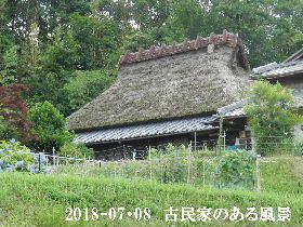 2018-07・08 今日の出遭い・・・ (7).JPG
