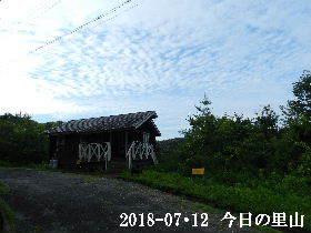 2018-07・12 今日の里山は・・・ (2).JPG