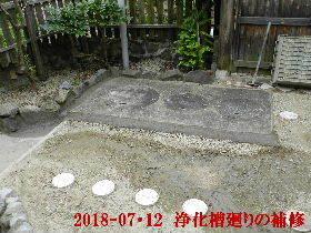 2018-07・12 我が家のスナップ・・・ (1).JPG