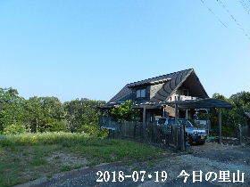 2018-07・19 今日の里山は・・・ (1).JPG
