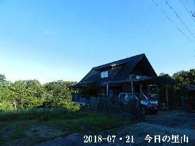 2018-07・21 今日の里山は・・・ (1).JPG