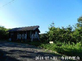 2018-07・21 今日の里山は・・・ (2).JPG