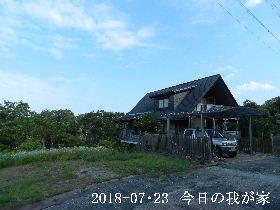 2018-07・23 今日の里山は・・・ (1).JPG
