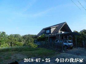 2018-07・25 今日の里山は・・・ (1).JPG