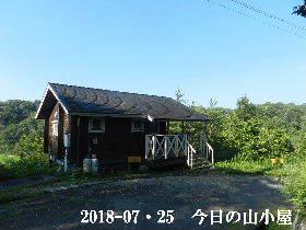 2018-07・25 今日の里山は・・・ (2).JPG