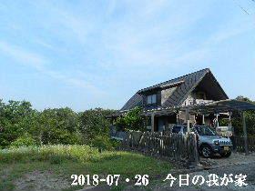 2018-07・26 今日の里山は・・・ (1).JPG
