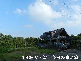 2018-07・27 今日の里山は・・・ (1).JPG