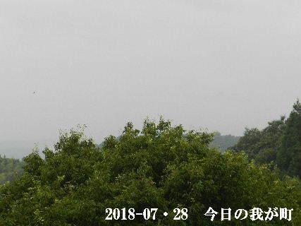 2018-07・28 今日の我が町.JPG