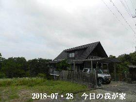 2018-07・28 今日の里山は・・・ (1).JPG